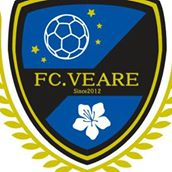 ヘルスアンドウェルネスサポート セミナー実績 FC VERAE